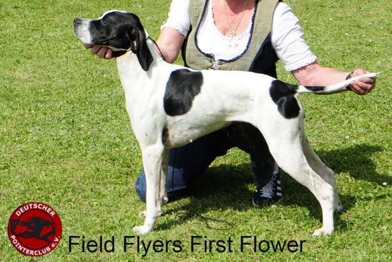 16 Field Flyers First Flower_DSC505600320015.JPG